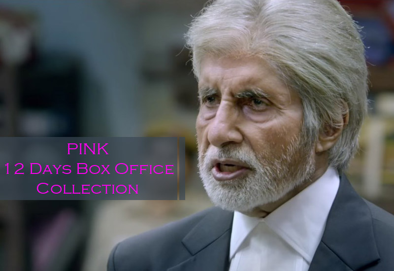 Pink Box Office Collection