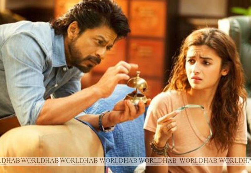 Dear Zindagi Box Office Collection Opening 1st Day Total Collection Report