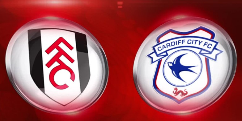 cardiff city vs fulham