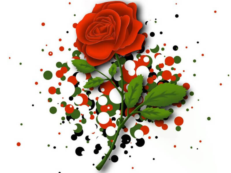 Happy Rose Day Wishes and Text Msg